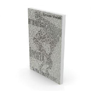 Roman Vodeb Knjiga: Interpretacija športa